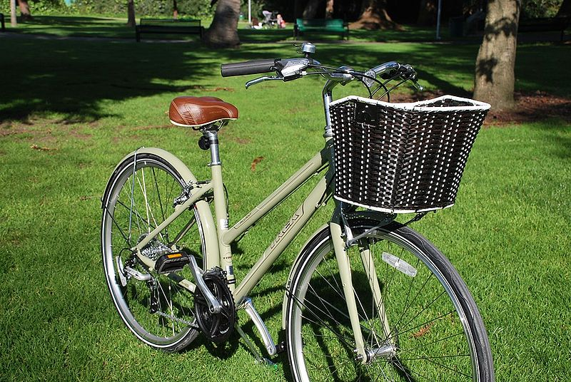 File:Trek Allant WSD with Espresso Basket.jpg